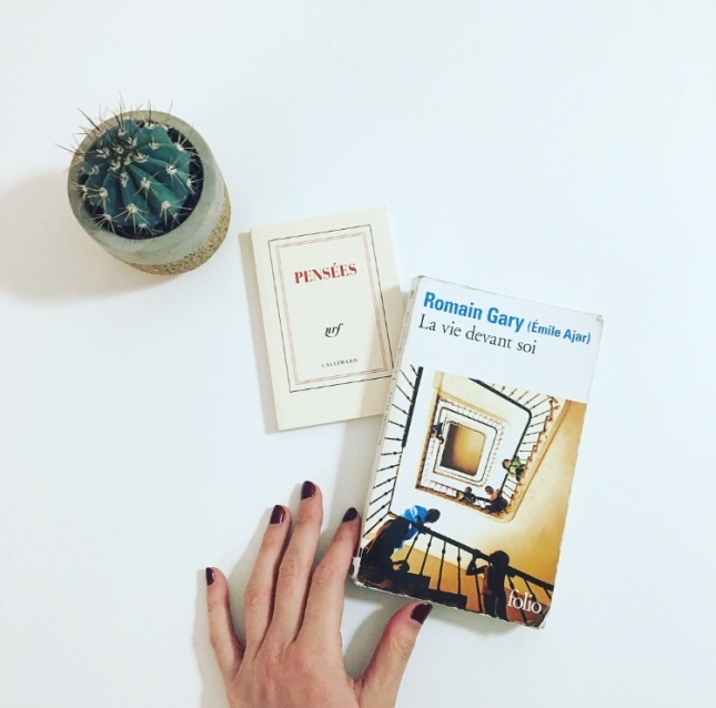 La vie devant soi - Romain Gary - Emile Ajar - Folio - Gallimard - prix goncourt 1975 - the unamed bookshelf