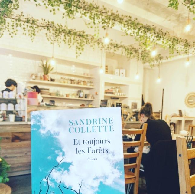 Et toujours dans les Forêts, Sandrine Collette, Editions JC Lattès Le masque Grand Prix des lectrices Elle 2020, The Unamed Bookshelf