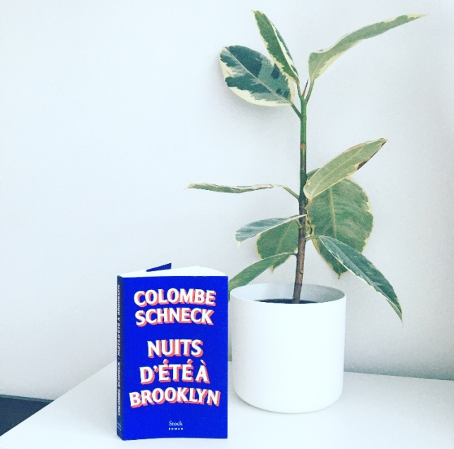 Nuits d'été à Brooklyn, Colombe Schneck, Editions Stock Romans The Unamed Bookshelf