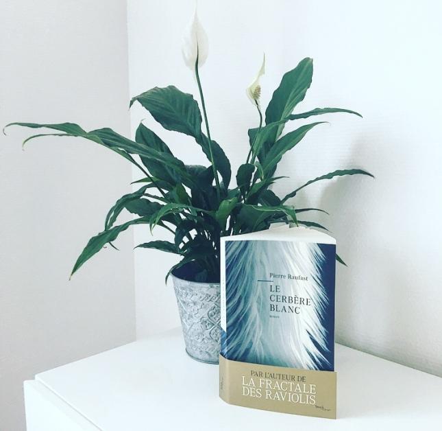 Le cerbère blanc, Pierre Raufast, Editions Stock, Collection Arpège, Mars 2020, The Unamed Bookshelf