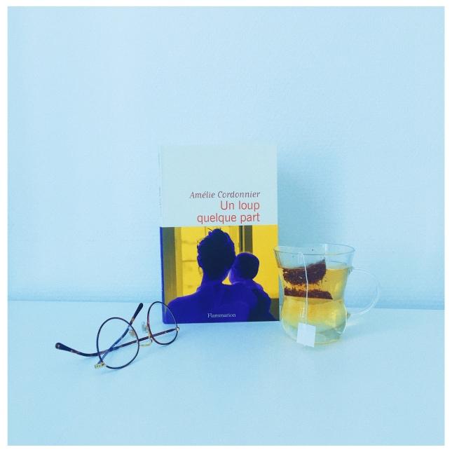 Un loup quelque part Amélie Cordonnier Flammarion The Unamed Bookshelf