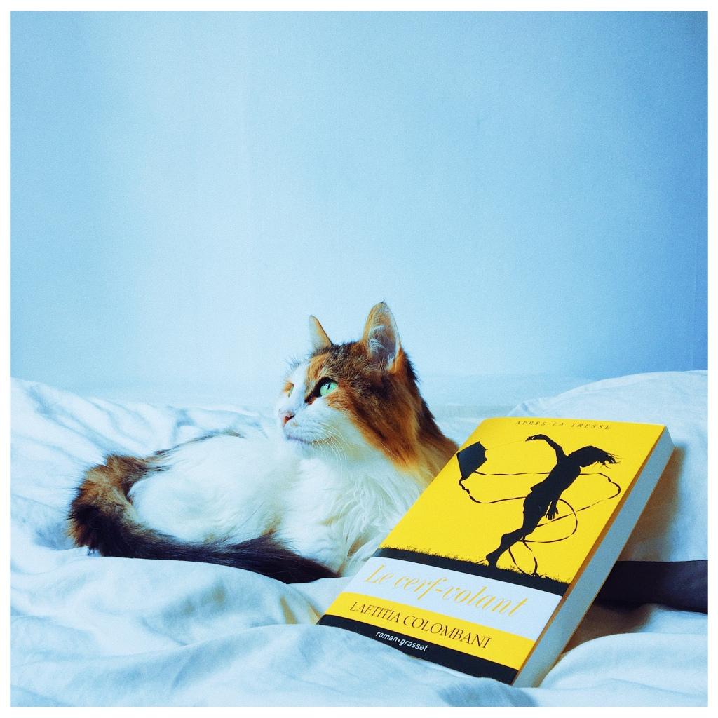 Le cerf-volant, Laetitia Colombani Editions Grasset The Unamed Bookshelf Chat Lecture