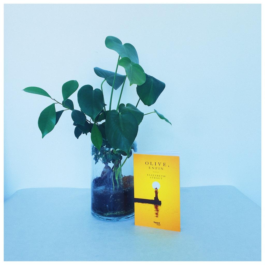 Olive, enfin, Elizabeth Strout, Editions Fayard Rentrée littéraire 2021 The Unamed Bookshelf