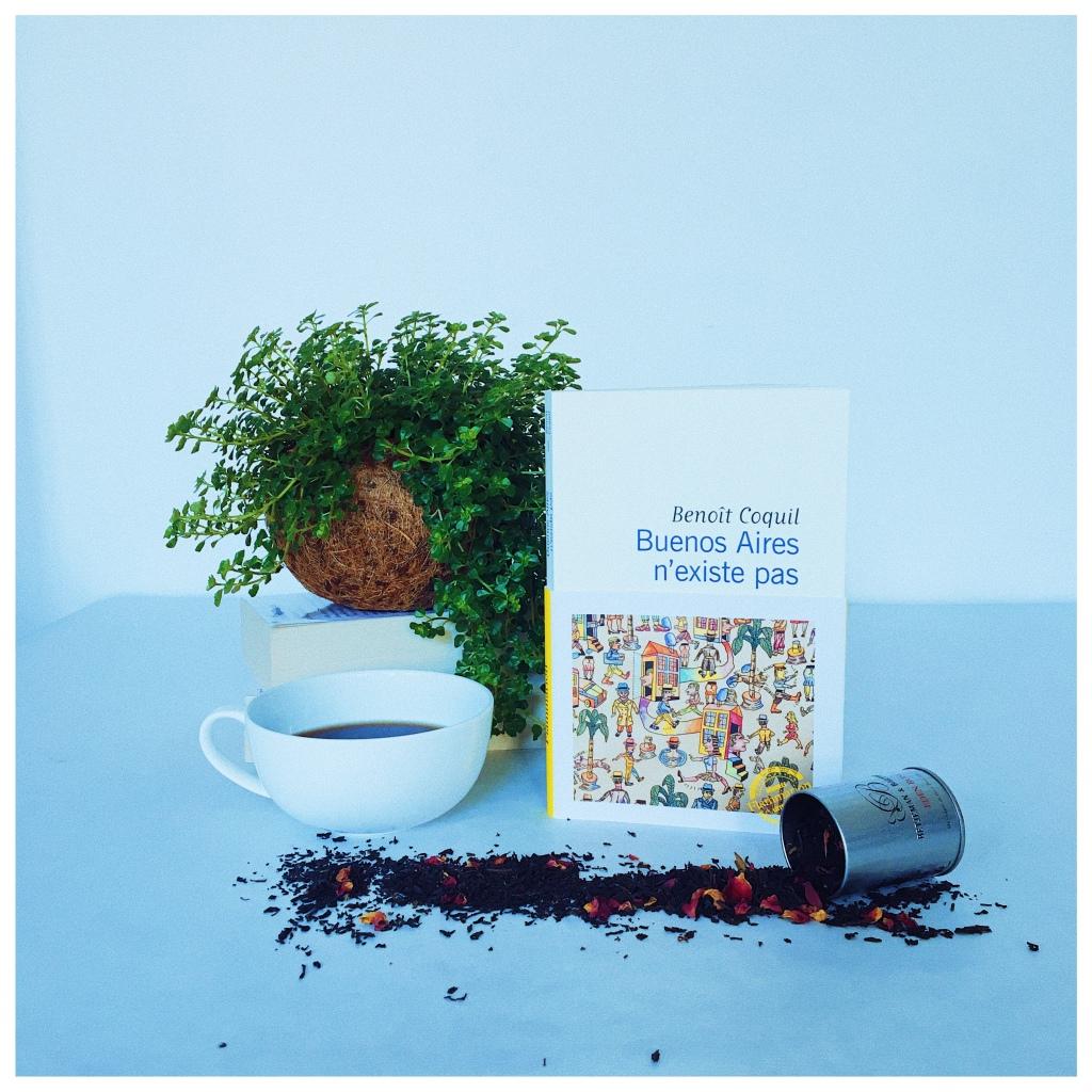 Buenos Aires n'existe pas, Benoît Coquil, Editions Flammarion, Rentrée littéraire 2021, The Unamed Bookshelf